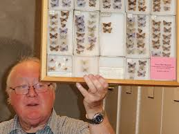 spirit halloween san mateo butterflies collected on san bruno mountain released at presidio