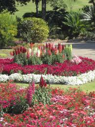 Types Of Garden Trees Garden Ornament Variety And Beautiful Ornamental Garden