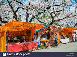 food vendors and cherry blossom trees in bloom in gappo park