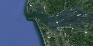 Astoria Oregon Map by Seal Snatching Shark Surprises Crabbers In Oregon River Sharks