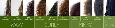 Hair Types by Hair Types Want To Explore More Natures Hair