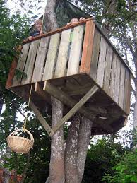 building your own tree house how to build a house how to build a treehouse treehouse forts and tree houses
