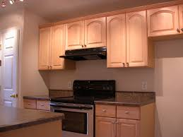cool condo kitchens makeover decor modern on cool creative at