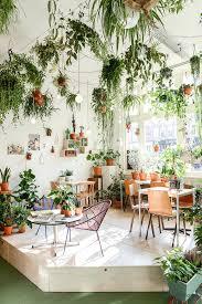amusing indoor hanging plant images indoor hanging planters nz