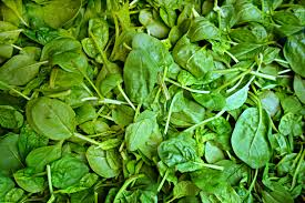 herbe cuisine images gratuites plante feuille repas aliments herbe produire