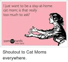 Stay At Home Mom Meme - 25 best memes about cat mom cat mom memes