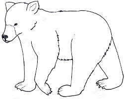 easy outlines of animals polar bear outline 9170