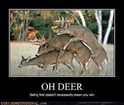 Oh Deer Meme - oh deer very demotivational demotivational posters very