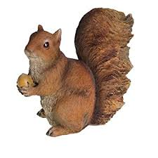 squirrel with nut garden ornament co uk garden outdoors