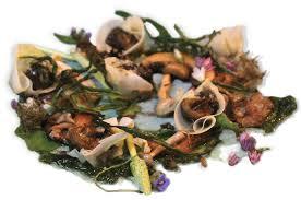 Types Of Garden Snails Snails To Eat Escargot Dorset Snails