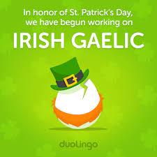 happy st patrick u0027s day we u0027re launching irish in the incubator to