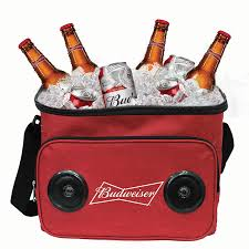 Pennsylvania travel cooler images 24 can bluetooth speaker cooler bag jpg