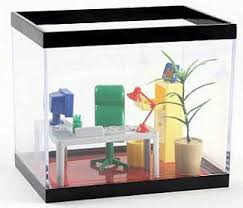 Office Desk Aquarium Office Fish Tank U2013 Make Your Fish Feel Like A Boss If You Want To