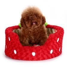 Cat Bed Pattern Dog Bed Pattern Korrectkritterscom