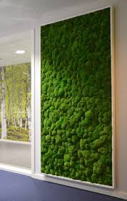 painting with moss tagging gone green moss wall office spaces