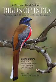 tips to buy indian womens clothing buy indian mammals a field guide book online at low prices in