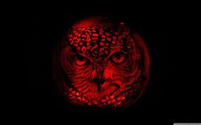pumpkin pattern wallpaper owl pumpkin carving hd desktop wallpaper widescreen high