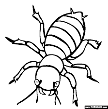 coloring pages insects bugs insect coloring pages insect coloring page insects coloring page