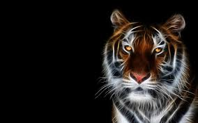 Desktop Hd Free Pictures Animals 3d Animals Wallpapers Images Wallpapers Of 3d Animals In High