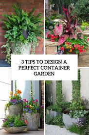 Home Garden Design Tips Container Garden Design Pictures On Home Designing Inspiration