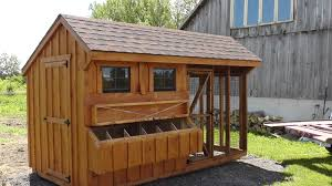 backyard chickens for sale chicken coops north country shedsnorth country sheds