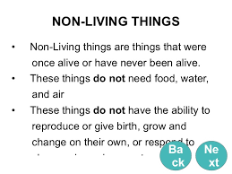 Characteristics Of Living Things Worksheet Middle Living Things And Non Living Things With License