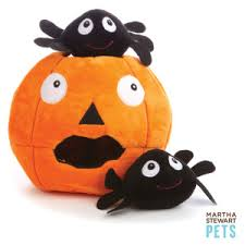 martha stewart pets halloween haunted pumpkin dog toy petsmart