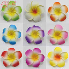 compare prices on plumeria flower home decoration online shopping
