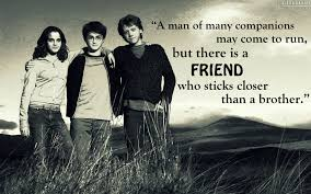 harry potter quote geekbeans