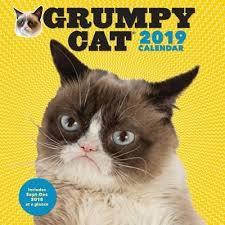 Grumpy Cat Mini Wall Calendar - cat calendar books books buy online from fishpond co nz