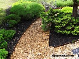 Flower Bed Border Ideas Wood Landscape Edging Landscaping Landscape Edging Ideas And Lawn