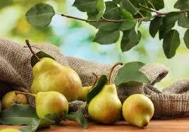 cuisiner la poir astuce de cyril lignac comment cuisiner la poire