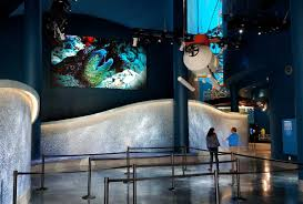 moody gardens used an led video wall instead of projection at