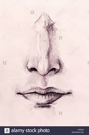 artistic sketch of face parts nose and mouth on white paper
