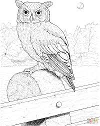 great horned owl coloring page free printable coloring pages