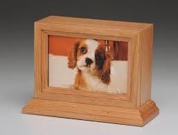 dog cremation best 25 animal cremation ideas on cheap garden