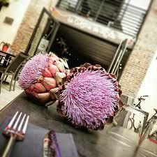 maitre de la cuisine la cuisine de lolie maître restaurateur picture of la cuisine