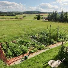 off grid permaculture farm with self sufficient garden in
