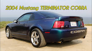 cars like a mustang mystichrome mustang terminator cobra review i like