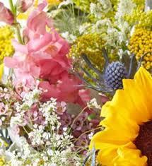 florist gainesville fl a bit country florist choice best garden and field flowers