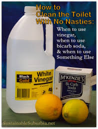 How To Clean The Grease Off Kitchen Cabinets by How To Clean The Toilet Naturally 5 Methods Sustainable Suburbia