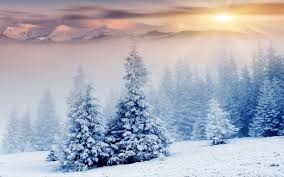 winter snow desktop wallpaper this wallpaper