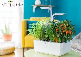 veritable autonomous indoor garden lets you grow herbs and small