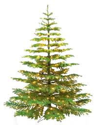 barcana 9 foot noble fir ready trim tree
