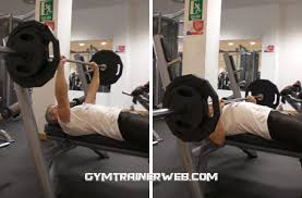 Bench Press Weight For Beginners Tips And Workout For Beginners Gym Trainer