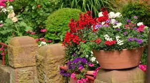 terrace gardening terrace gardening tips how to start a terrace garden