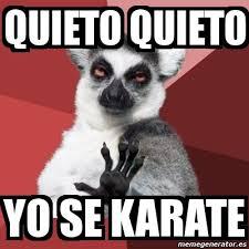 Meme Karate - meme chill out lemur quieto quieto yo se karate 3334513