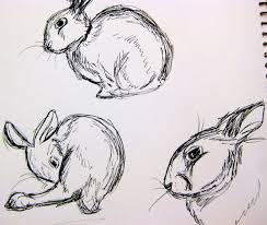 rabbit sketches by balba bunny on deviantart
