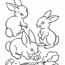 coloring rabbit kids drawing coloring pages marisa