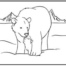 coloring pages polar animals archives mente beta complete